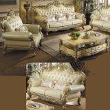 خشبيّة جلد أريكة لأنّ يعيش غرفة أثاث لازم (533)
