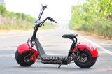 500W 48V Electric Scooter Cargador Scooter eléctrico Elektro Scooter