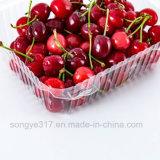 uma caixa retangular da cereja com uma caixa de caixas do alimento de animal de estimação das frutas e verdura