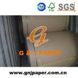 Panneau de la Chine 110GSM-230GSM Kraftliner de bonne qualité