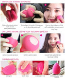 Hot Sell Beauty Makeup Blender Sponge Latex Free, Sample Free