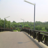 réverbère solaire de 10W-50W DEL avec la meilleures cour des prix et lampe de route