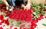 36PCS het huwelijk nam Duidelijke Acryl toenam de Verpakkende Doos van de Bloem van de Doos toe