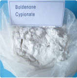 Анаболических андрогенных стероидов Порошок Boldenone Ципионат CAS: 106505-90-2
