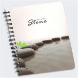 Papier en pierre imperméable à l'eau respectueux de l'environnement (RPD100)