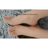 Nette Fetisch-Fuss-gefälschte Füße für Trainings-Fuss-Fetisch-Spielwaren