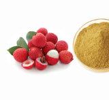Extracto de Litchi com 10% e 20% e 40% de polifenóis para suplemento alimentar