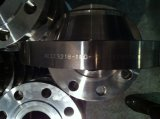 ステンレス鋼F304Lの平らなフランジJIS B2220 10kのパン切れ