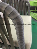 Belt Woven & Aluminum Furniture, Outdoor Garden Sofa (TG-6004)
