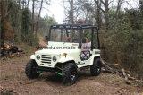 elektrische Autoped 250cc ATV Automative voor Volwassenen