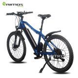 Fahrrad u. Strand des fetter Reifen-elektrisches Fahrrad-Berge Sruiser Schnee-Fahrrad für Wüsten-Cer En15194