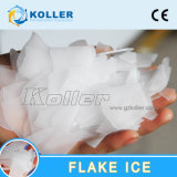 2000kg/Day氷の収納用の箱が付いている空気によって冷却される薄片の氷メーカー