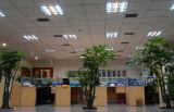 Tubo de LED de 1,2 m T8 regulable y Certificación Dlc