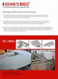 Correia transportadora modular de giro com FDA Ctertificate (HS-2000A)