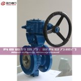 CF8 CF8m Wcb V Segment Ball Valve para Water Treatment