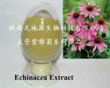 In water oplosbaar Polyphenol van het Uittreksel Echinacea en Zuur Chicoric