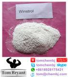Polvere grezza steroide orale di Winstrol di alta qualità di 99%