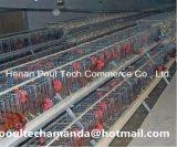 Gaiola da galinha do reprodutor para a exploração avícola (um tipo frame)