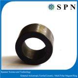 Ring van de Magneet van het ferriet de Permanente Gesinterde Veelpolige voor de Motoren van gelijkstroom