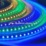 Luz azul de la cuerda de la tira SMD5050