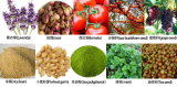 Macchina dell'estrazione della vitamina E