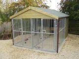 屋外の熱い販売網の実行セクションが付いている大きい二重犬の犬小屋