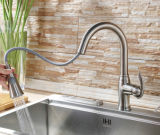 Singolo Lever Pull out Kitchen Faucet con Zinc Handle