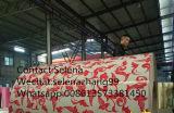 Vorgestrichene galvanisierte neue Stahl-Stahlringe des Marmor-PPGI