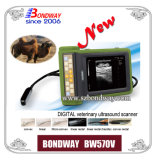 Chinesisches Exporter von Digital Veterinary Ultrasound Imaging System Bw570V