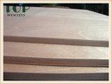 1220*2440 (4*8) 가구를 위한 9/12/15/18mm 포플라 또는 유칼리나무 또는 경재 코어 E0/E1 상업적인 합판
