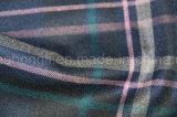 Tela teñida hilado de T/R, tela grande de la tela escocesa, 65%Polyester 32%Rayon 3%Spandex, 235GSM