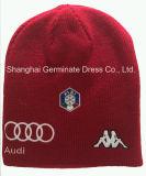 2017の方法帽子の刺繍の編む帽子(HJB-103)