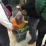 2016 Großhandelssupermarkt-Plastikwalzen-Einkaufskörbe mit Rädern