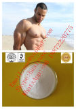 Manのための健全なHot Sale Steroid Powder Androstenedion (63-05-8)