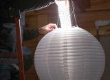 Cabo flexível 1 ' esteira do diodo emissor de luz da Branco-Cor de X 3 '