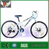 2016 новый 24 Bike горы Китая En15194 Bike электрических велосипеда дюйма электрических электрических