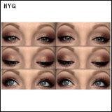 FAVORABLE sombreador de ojos del color de la gama de colores 16 de Lorac con la gama de colores luminosa de la sombra de ojo de la pintura de fondo del ojo