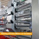 Оборудование курочки надежного изготовления Китая автоматическое для фермы слоя