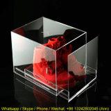 Hochwertiger Acrylschuh-Schaukarton