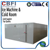 Quarto superior Hot Sale de Quality Cold para Fruit Vegetables Meat