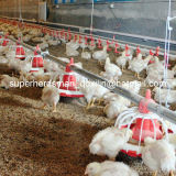 Broiler를 위한 가득 차있는 Set Automatic Pan Feeding Poultry Farm Equipment