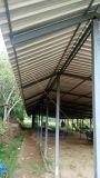 Hoja plástica coloreada del material para techos del palmo largo en China