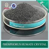 Flocos brilhantes de Humate 95%Min do fósforo da série de X-Humate H95/pó
