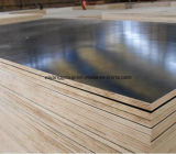 Primer Class Brown Shuttering Film Faced Plywood para Construction
