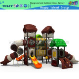 Park Indoor (HD-1001C)를 위한 새로운 Design Playground Equipment Toys