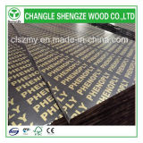 a construção de 21mm usou a construção/película concreta a madeira compensada enfrentada