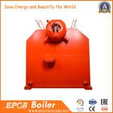Caldeira dobro da grelha da corrente do cilindro do SZL de Epcb com todos os acessórios
