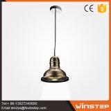 Lumière pendante en aluminium du type 250mm de bronze neuf de biens