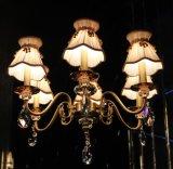 Phine pH-0821t-6&8 подготовляет свет канделябра светильника приспособления освещения самомоднейшего украшения Swarovski кристаллический привесной