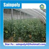 トマトのための中国の製造業者のSainpolyのブランドの太陽温室